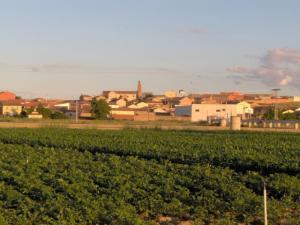 Vista del pueblo desde la Vega del rio Esla